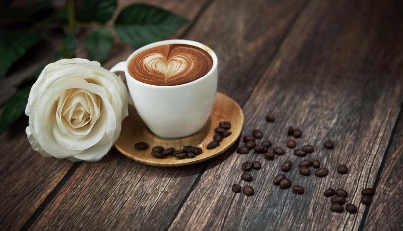 西摩兰咖啡店加盟费用多少